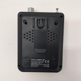 Ibiza Sound PORT1-BT - Compacte luidspreker met Bluetooth 30W achter