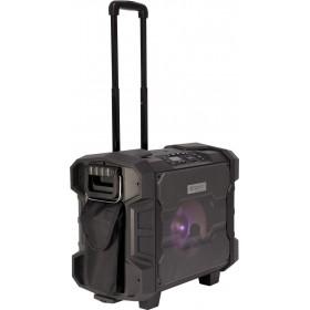 """Ibiza Mobiele Trolly Speaker - 10"""" 300w met BT/NFC/FM/USB en UHF Microfoon"""