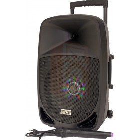 Party Light & Sound Party-12LED - DRAAGBARE LUIDSPREKER 12 Inch - 700W MET USB, BLUETOOTH, FM en VHF MICROFOON
