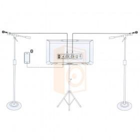 Mackie FreePlay LIVE Draadloze PA Bluetooth Speaker aansluit schema opstelling met 2 microfoons