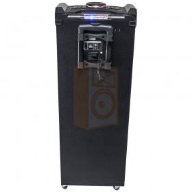 Ibiza Sound STANDUP-DJ-MKII - Mobiele DJ box 300W met usb, bluetooth & draadloze microfoon - achterkant aansluitingen