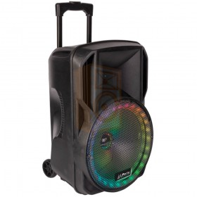 Party licht en sound PARTY-15RGB Draagbare luidspreker 15''/38cm met USB, BT en microfoon - links