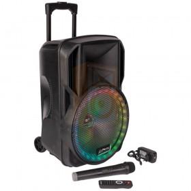 Party licht en sound PARTY-12RGB Draagbare luidspreker 12''/30cm met USB, BT en microfoon - overzicht