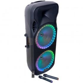 Party Light & Sound 215RGB - 900W draagbare luidspreker 2x15'' met USB, bluetooth, FM en 2 UHF microfoons