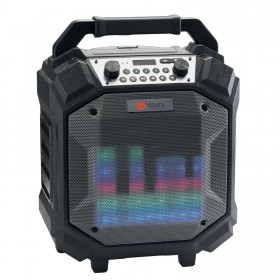 AUDIOPHONY Boombox - 60W batterij BT luidspreker met FM