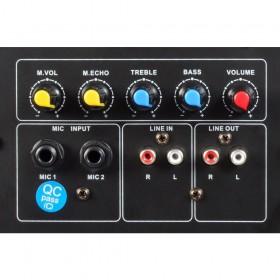 """aansluitingen en bediening SkyTec CSA212 PA Speaker Actief 2x 12"""" 1200W"""