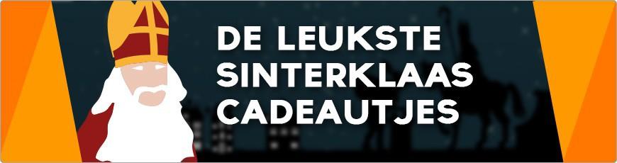 Sinterklaas cadeaus: Karaoke, Discoverlichting, DJ Gear en meer!